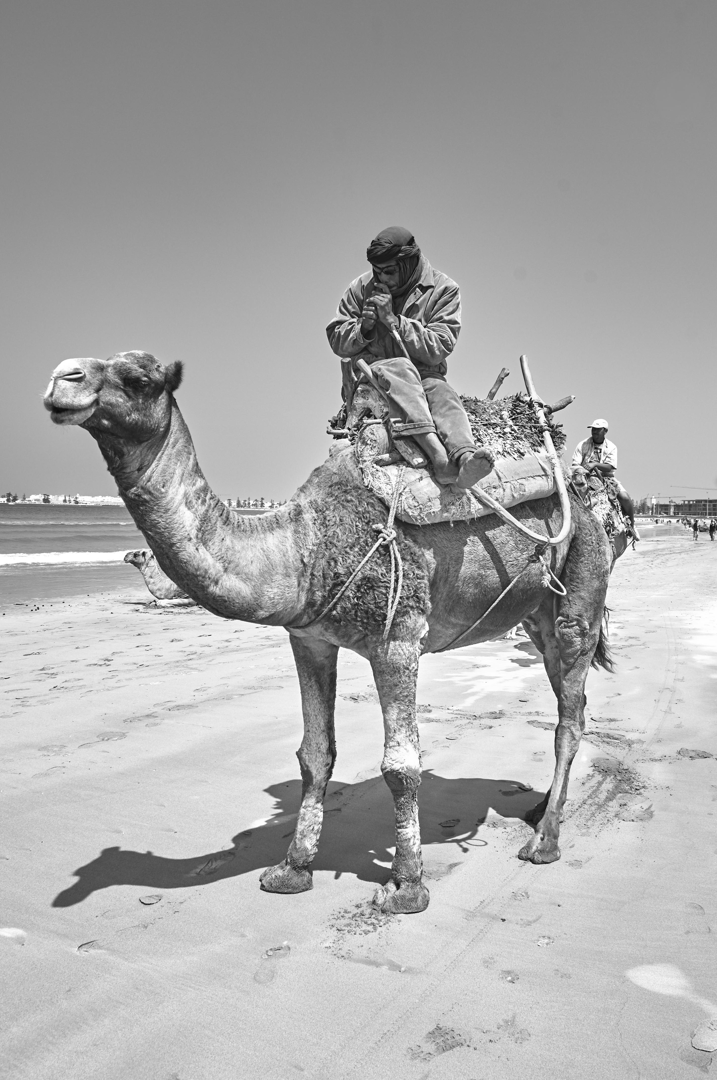 Essaouira07_0317