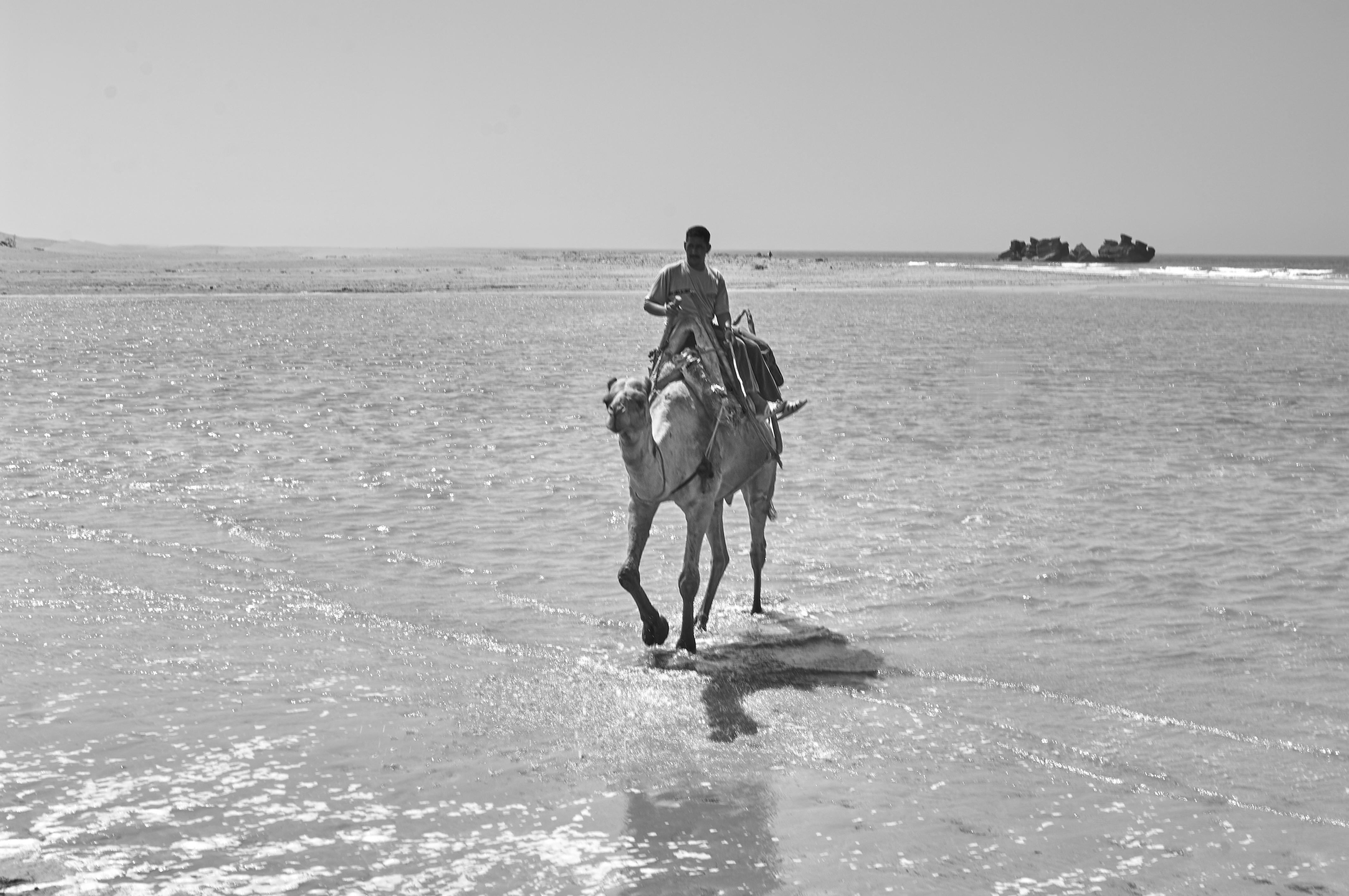 Essaouira07_0348