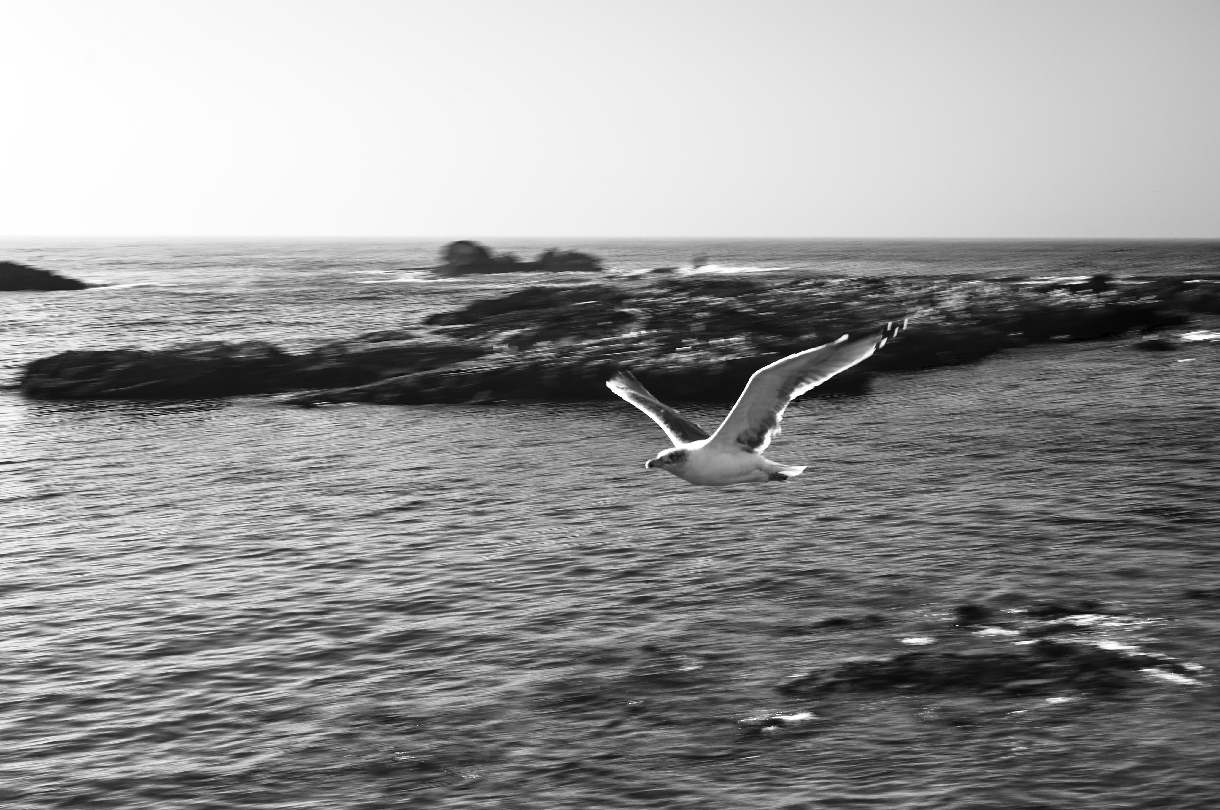 Essaouira07_0413