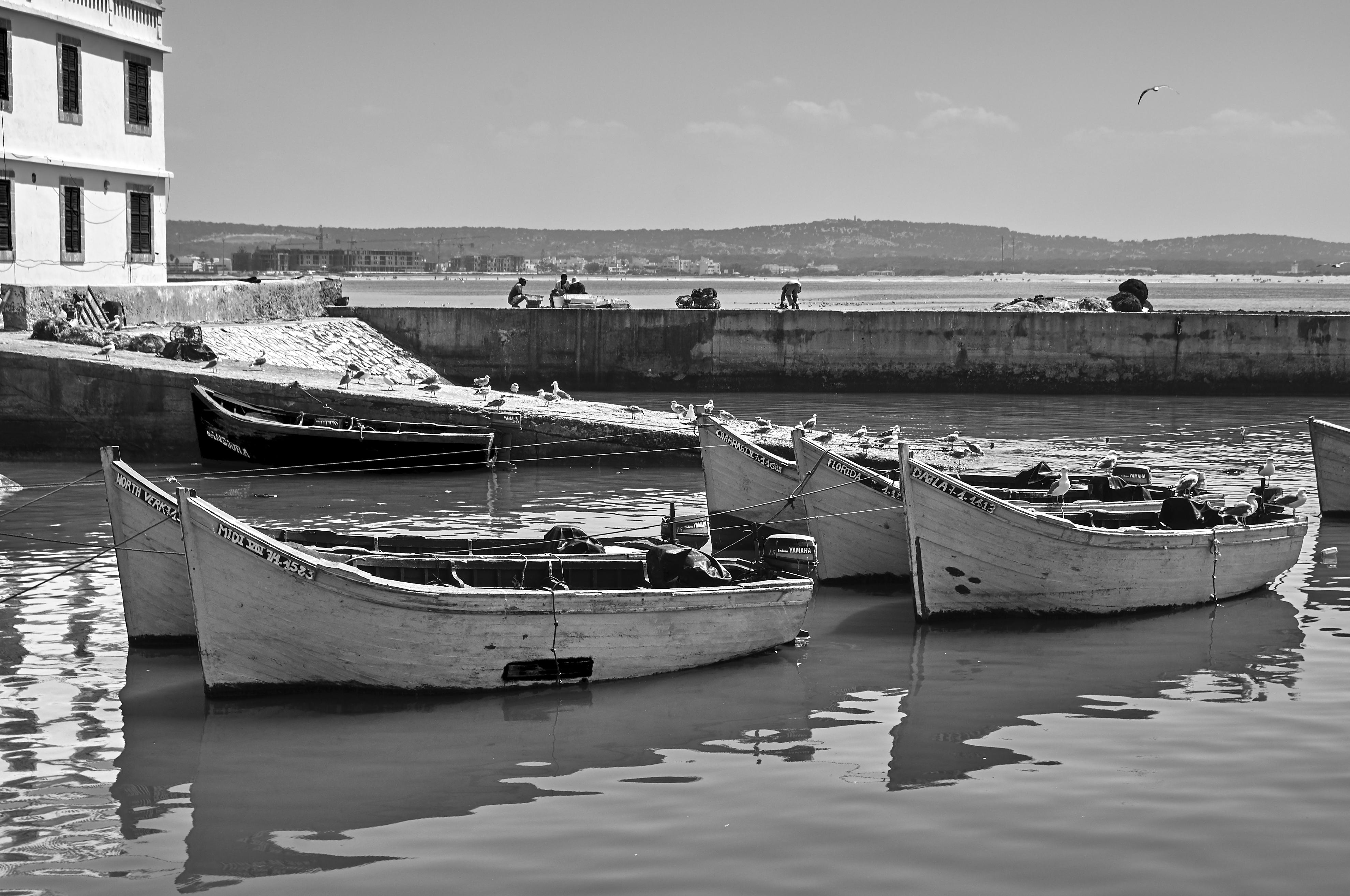 Essaouira07_0579
